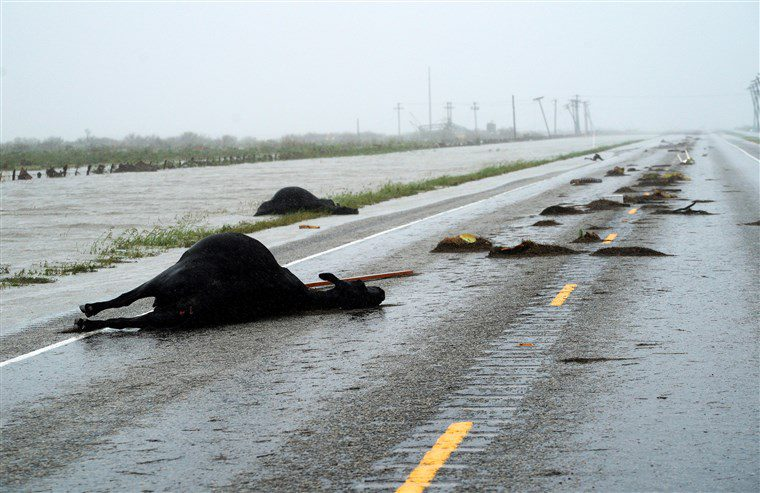Hurricane Harvey Presents HR Issues For Employers